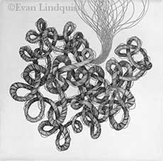 Evan Lindquist artist-printmaker, Thought, line engraving on copper plate